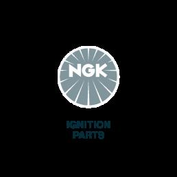 NGK - Logo